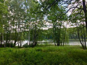 Rogoznik II Maraton 7 jezior
