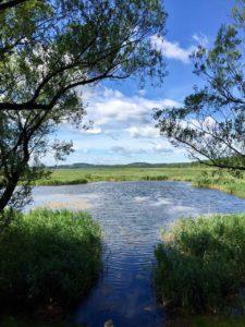 Rozlewiska Rzeki Brynicy Maraton 7 Jezior (4)