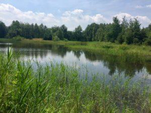 Zbiornik Zandka Maraton 7 Jezior (1)